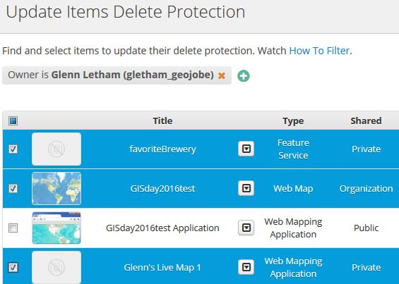 update items delete protection in arcgis online wit Admin tools