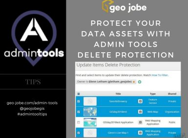 admin tool tips - protect your arcgis assets with delete protection