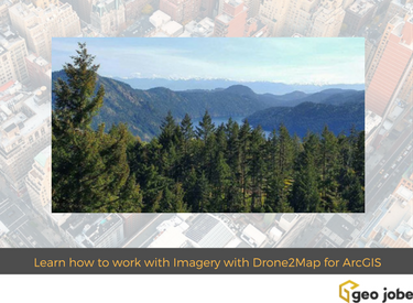 Geoedu tip learn how to work with imagery with drone2map for geoedu tip learn how to work with imagery with drone2map for arcgis geo jobe sciox Gallery