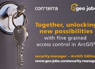 security manager for ArcGIS