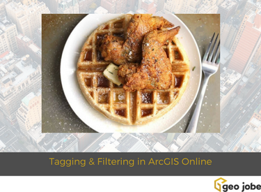 tagging and filtering in arcgis online