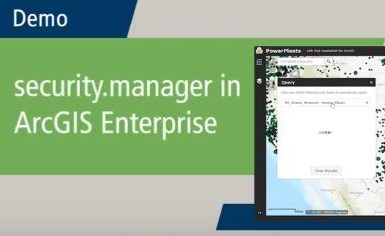 security.manager demo